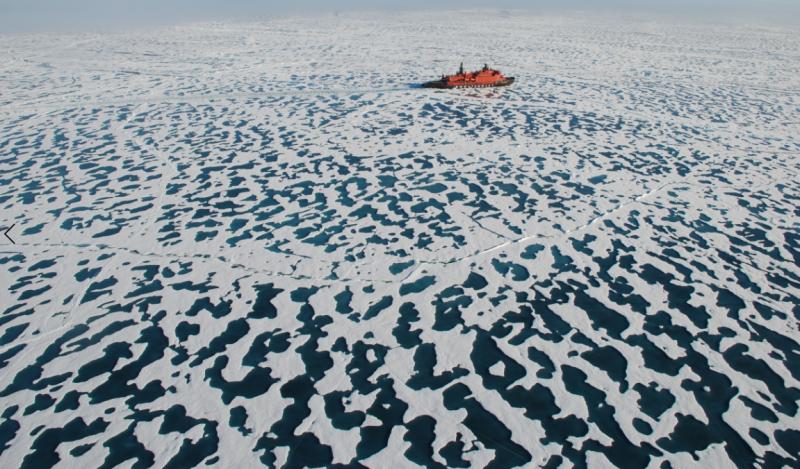 Arktični ocean. Vir: felicityasto.co.uk.