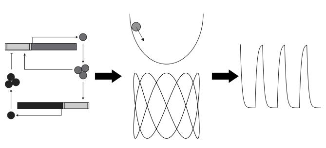 oscilatorji