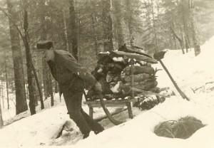 Dovažanje drv za oglarsko kopo, 1942, arhiv Pokrajinskega muzeja Kočevje