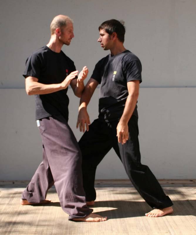 Jernej sever (desno) pri vadbi taijiquana z Žigom Tršarjem (foto: osebni arhiv JS).