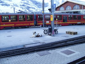 Jungfraubahn (foto: Carlosvi04london via Wikimedia)