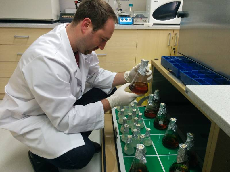 Luka Kranjc v laboratorijski vinski kleti - kateri kvasovki bo prvi uspelo? (foto: osebni arhiv LK)