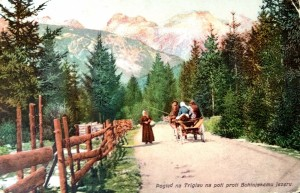 Pogled na Triglav na poti proti Bohinjskemu jezeru, razglednica, okoli 1905