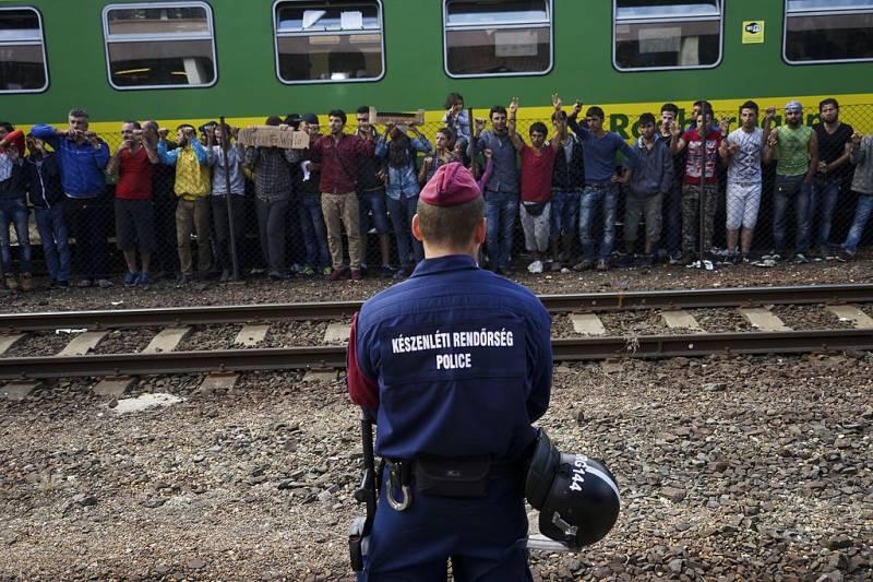 Sirski begunci na Madžarskem, 4. september 2015 (foto: Mstyslav Chernov via Wikimedia)