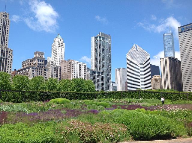 Urbani vrt v Chicagu, ZDA (foto: Theresamcgee via Pixabay)