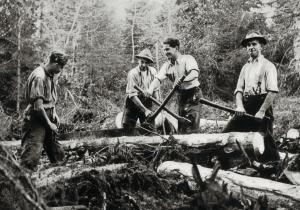 Delo v gozdu, Herbert Otterstädt: Gottschee, Verlorene Heimat Deutscher Waldbauern, Freilassing, 1962