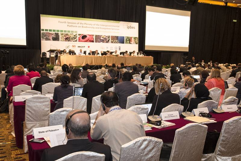 The Fourth Session of the Plenary of the Intergovernmental Platform on Biodiversity and Ecosystem Services took place 20-28 February 2016 in Kuala Lumpur, Malaysia (via IPBES Media Kit)