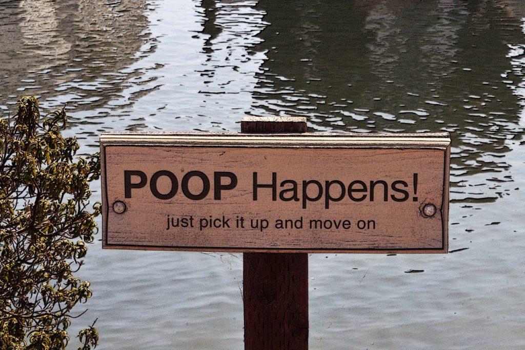 (foto: publicdomainpictures.net)