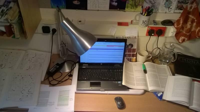 """""""Predvidljivo nerazburljiva delovna miza."""" (foto: Kaja Stemberger)"""